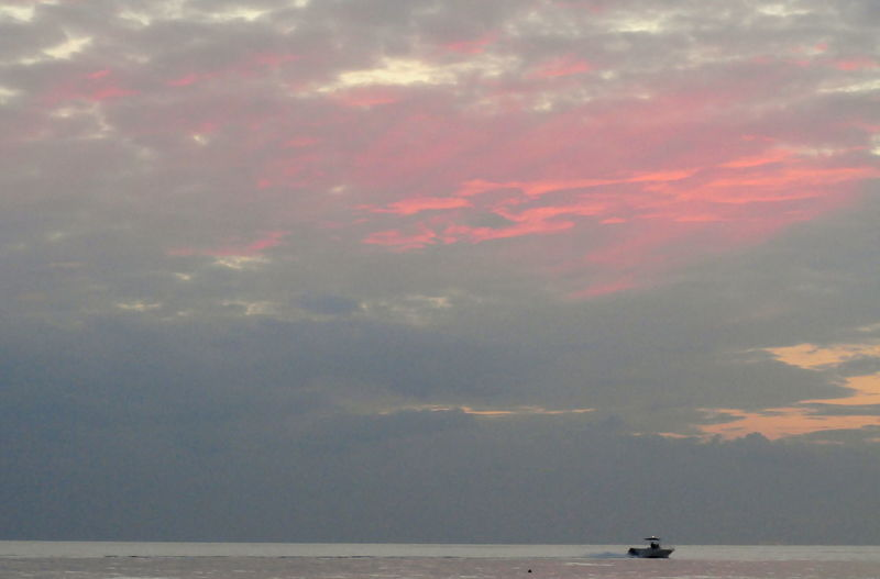 Cielo Rosa Pink Sky Beauty In Nature Beauty Nature Cielo Cielo E Mare Cloud - Sky Distant Horizon Horizon Over Water Nature Nautical Vessel No People Outdoors Remote Scenics - Nature Sea Sky Tranquility Water