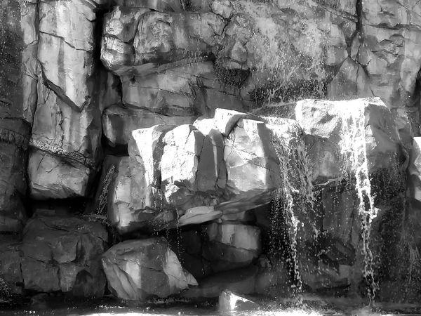 Fountain Series in Black and White. Decided to play with some black and white filters. These is a series of photos of fountains outside of a casino up north I took on a trip. Beautiful Fountains Plants Pond Shadows & Light Statues In The Park Sun And Shadow Tourist Attraction  Black And White Collection  Black And White Photography Blackandwhite Blackandwhitephotography Day Nature Outdoor Photography Park - Man Made Space Playing With Flilters Reflections Scenery Scenics Statues Tourism Trip Photo Water Waterfalls