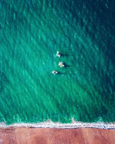 Aerial view of people canoeing on sea