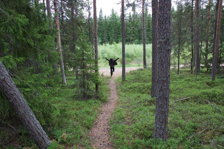Free roaming in forest Forest One Person Nature Real People Lifestyles WoodLand Leisure Activity The Way Forward Outdoors Freedom Scandinavia Summer Green Color Man The Great Outdoors - 2019 EyeEm Awards The Great Outdoors - 2019 EyeEm Awards