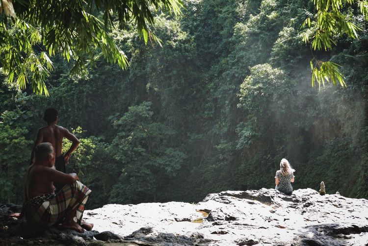 Rear view of man sitting on rock in forest