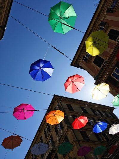 Genova for euro flora Umbrellas Low Angle View Multi Colored Decoration No People Sky Blue Built Structure Hanging Building Exterior Architecture Clear Sky Umbrella Day Creativity Celebration Outdoors