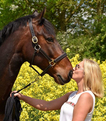 Live For The Story Horse Love Kiss Woman Blond Hair Outdoors Happiness Day Beauty In Nature Horses Naturelovers Horse Photography  Holsteiner Rapeseed Nature Young Women Animal People Side View One Person One Animal Horseback Riding Women Portrait