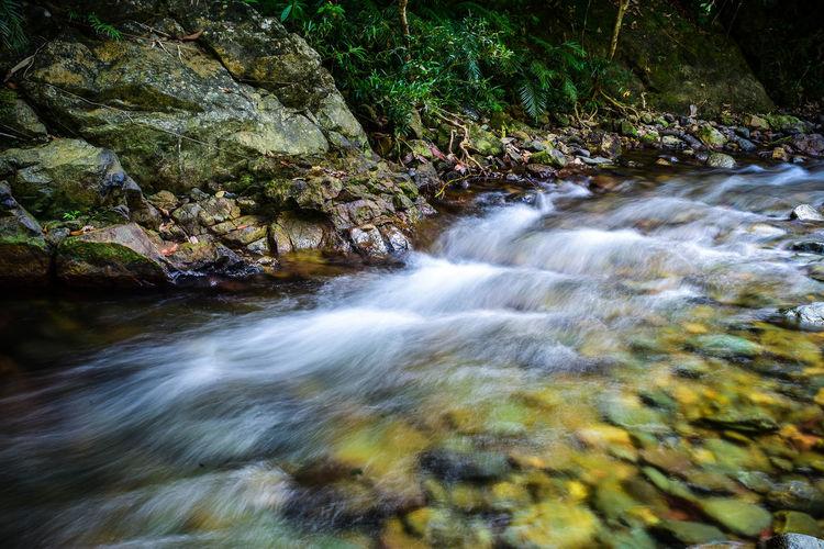 A stream in