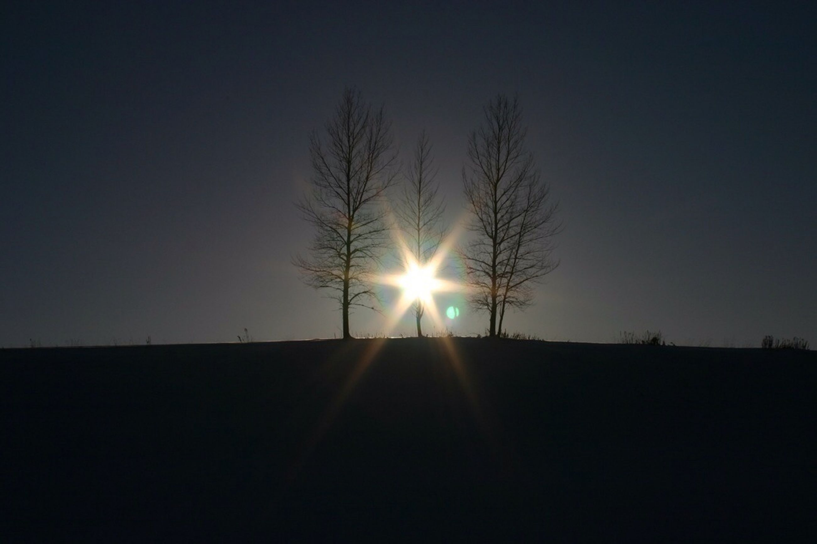 sun, silhouette, bare tree, tranquility, sunset, tranquil scene, clear sky, scenics, landscape, sunlight, lens flare, copy space, nature, beauty in nature, sunbeam, dark, sky, tree, field, outdoors