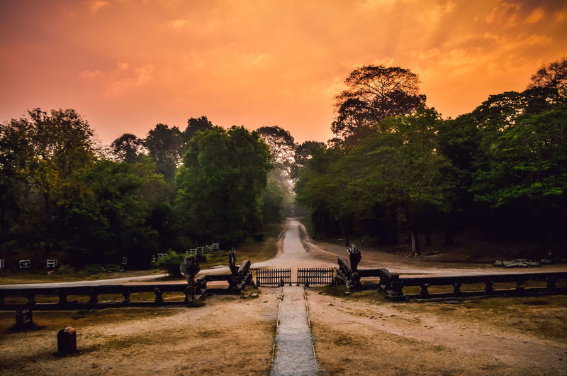 Footpath amidst trees against sky during sunset