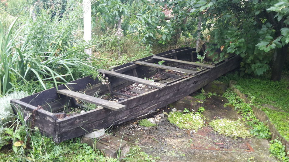 Old River Boat Riverboat Boat On Land Wood Boat Old Wood Boat Danube Panonian Drava Boat Wrecked Rotten Wood