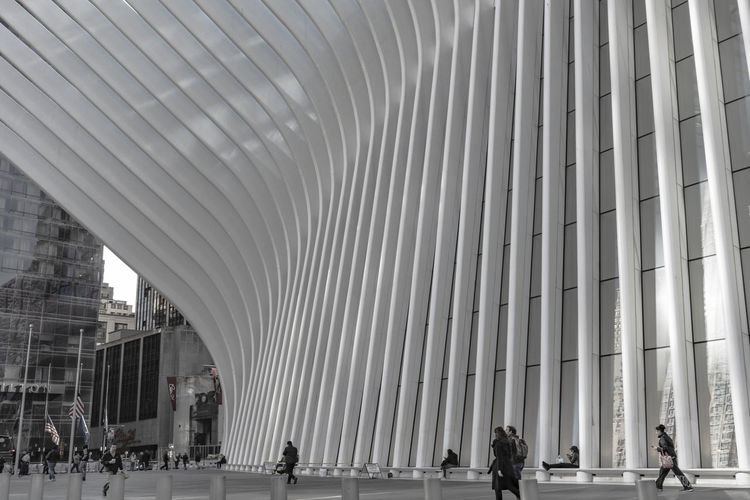 streetscene.... Architecture Built Structure Group Of People Modern Real People Architectural Column Incidental People City Day Building Exterior Men People Building Walking Adult Women Crowd Pattern Travel Lifestyles Outdoors Ceiling Streetphotography Exceptional Photographs EyeEm Best Shots EyeEm Gallery Cityscape Urban Skyline Oculus Travel Photography Wanderlust Lines And Shapes New York Unrecognizable Person Urban Geometry The Street Photographer - 2019 EyeEm Awards The Architect - 2019 EyeEm Awards The Minimalist - 2019 EyeEm Awards The Traveler - 2019 EyeEm Awards