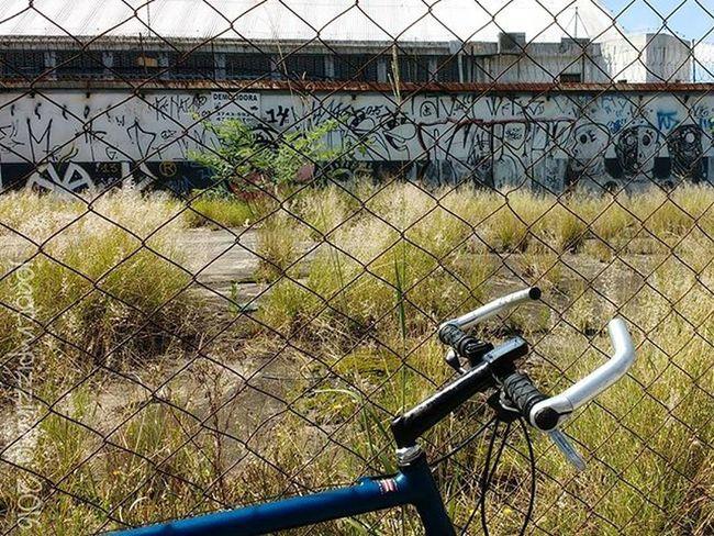 Bike Bicycle Streetphoto_brasil Colors City Zonasul Saopaulo Brasil Photograph Photography Tv_urbex Trailblazers_urbex Rsa_preciousjunk Streetart UrbanART Urbexbrasil Urbexsp Nasruasdesp011 Mundoruasp Olhonaruasp Flaming_abstracts