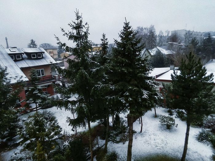 So it's White Christmas for next 2 hours. Soon rain will kick in and wash it all away. Picture taken with a Tello, a 100$ cute little drone I got as a gift from my brother. Dronephotography Aerial View City Tree Snow Cold Temperature Winter Extreme Weather Cityscape Weather House Sky Residential Structure Snowfall Human Settlement TOWNSCAPE Snowing Residential District