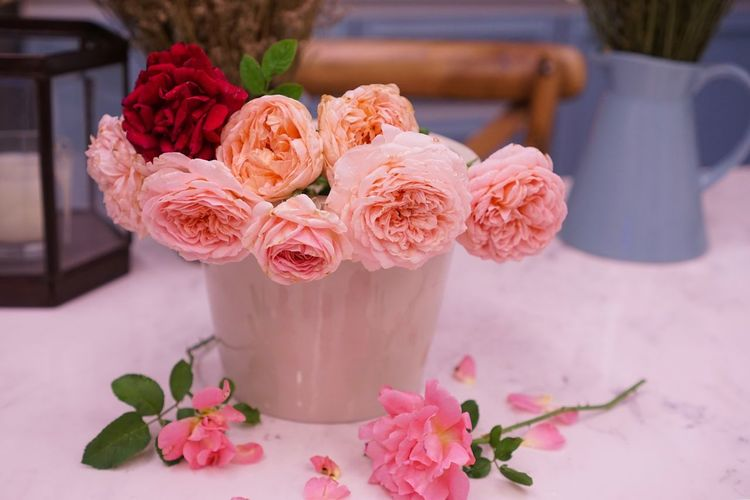 Flower Fragility Table Rose - Flower Petal Freshness No People Beauty In Nature Indoors  Nature Close-up Day Bouquet Vase Of Flowers Vase Decoration Vase Rosé