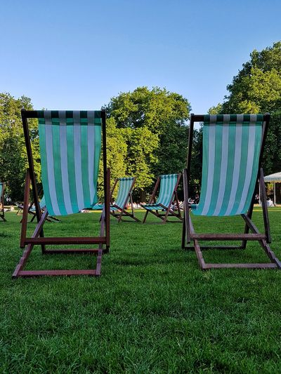 Tree Day Outdoors Grass Nature Lawn City Life Deck Chairs Summer Park Sunshine Deck Chairs In A Row Sitting In The Sun Summer Day At The Park Urban Park City Park In Summer City In Summer Weekend In The City Weekend Activity Sky Beauty In Nature Green Color Growth Grass Tree