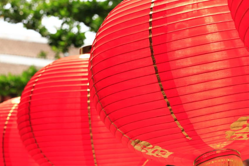 Red Lantern in Chinese style. Red Lantern For The Chinese New Year Architecture Celebration Chinese Lantern Close-up Day Decoration Festival Focus On Foreground In A Row Lantern Lighting Equipment No People Outdoors Paper Lantern Pattern Pink Color Red Red Lantern Red Lantern Hot Pepper Red Lanterns China Red Lanterns For Chinese New Year Spirituality Traditional Festival