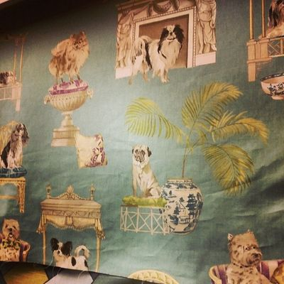 Oh.my! I NEED to find a use for this fabric. Who else needs this in their life?! Hingestore Homedecor Upholstery Dogs hilarious