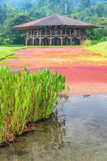 Lake next to a large wooden building near Manizales, Colombia Colombia Green Manizales Pond Red Travel Architecture Beauty In Nature Caldas Coffee Triangle Day Eje Cafetero Lake Landscape Nature No People Outdoors Sky South America Tourism Travel Destinations Tree