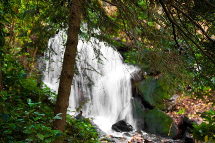 Waterfall Taking Photos Nature Walking Around