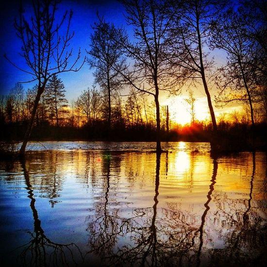 Sunset in the flooded #Maraispoitevin 5/6 bonjour ☺☀ Maraispoitevin
