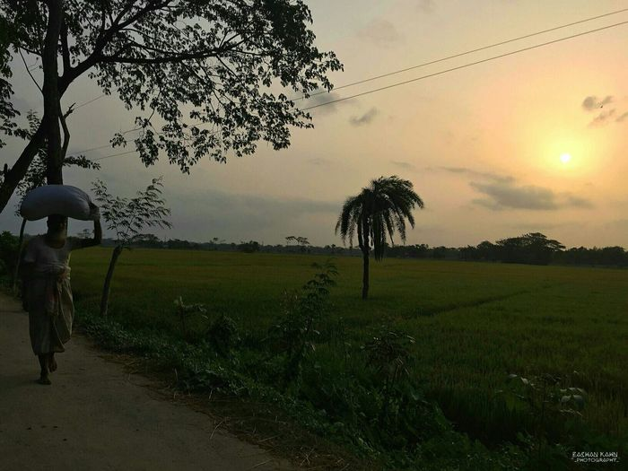 EyeEm Bangladesh Eyem Best Shots IPhoneography Smartphonephotography Evening Sky Adventure