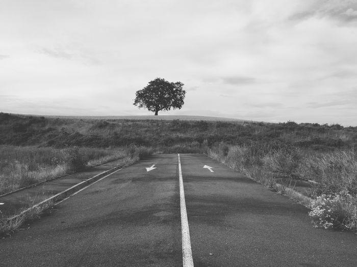 Badie Grass Notseig Road Black Pierre Portal White