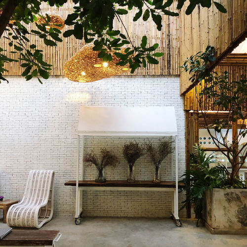 Potted plants on chair by swimming pool against building