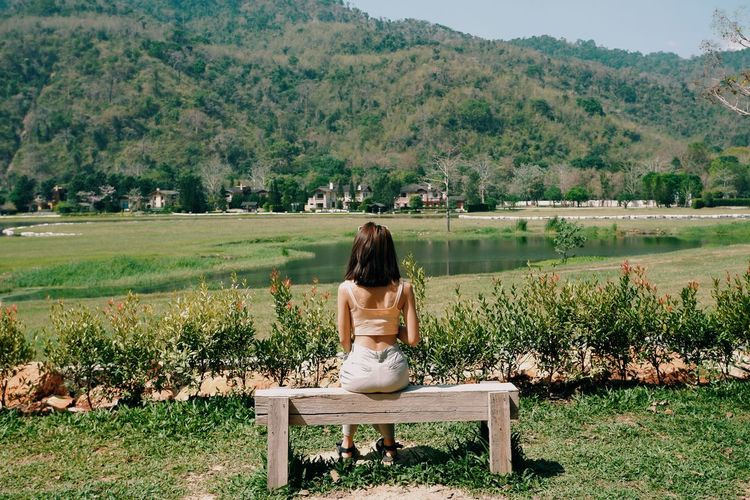 Rear view of woman sitting on bench against trees