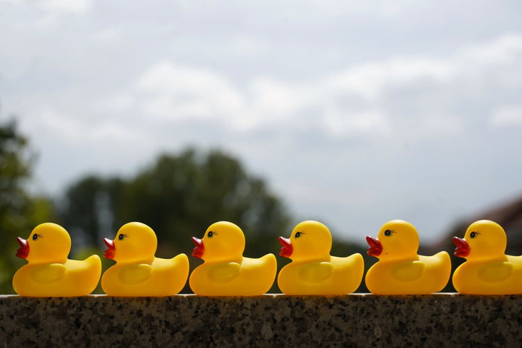 Close-up of yellow toys floating on water against sky