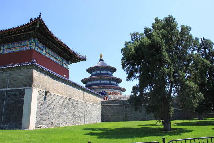China Beauty China Photos Temple Of Heaven Park Architecture Building Exterior Built Structure China History Temple Of Heaven Travel Destinations Tree