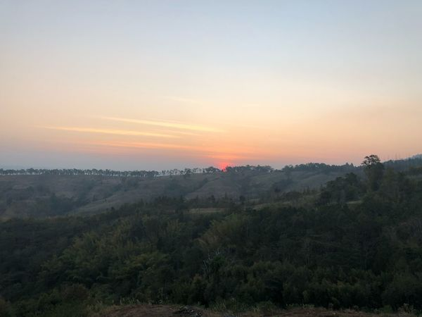 The sunset in khao kho Nature Tree Landscape Tranquility Beauty In Nature Tranquil Scene No People Sunset