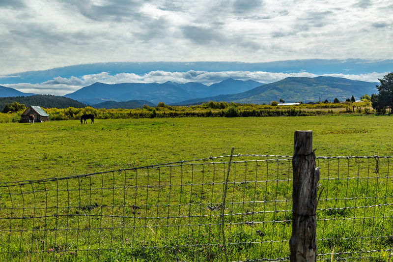 Agriculture Beauty In Nature Cloud - Sky Day Field Horses Landscape Mountain Mountain Range Nature New Mexico No People Outdoors Rural Scene Sangre De Cristo Range Scenics Sky Social Issues