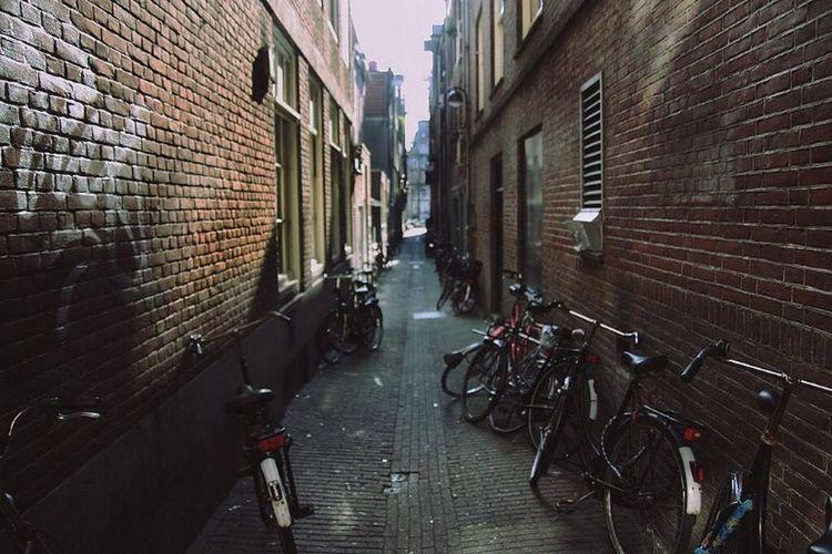Amsterdam, Dutch