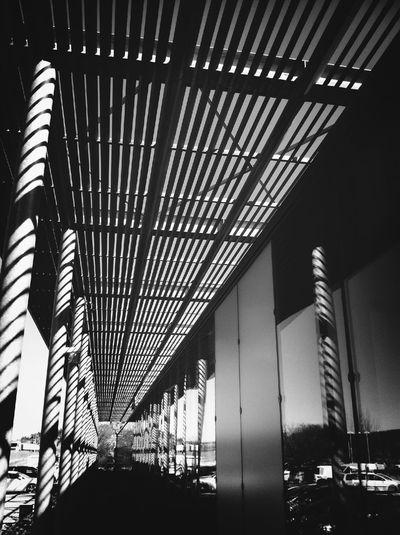 Reflections Black & White Ombre Et Lumière