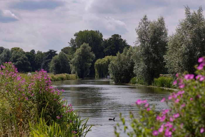 Riverview Kromme Rijn Landscape Clouds And Sky In The Field Flowers Riverside River Netherlands