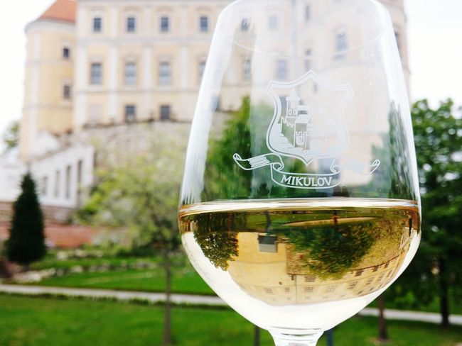Castle Wine Wineglass Wine Tasting Wine Glass Wine Time Mikulov Perfect Day Wine Country Winetasting Morava Mirrored Reflection Reflection In The Water Glass Architecture Old Buildings Old Town Background