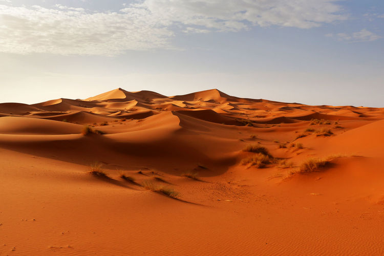 Sahara desert during sunrise North Africa Africa Travel Golden Golden Hour Sand Dunes Morocco Sahara Merzouga Sahara Desert Sand Dune Sand Desert Land Landscape Climate Scenics - Nature Tranquility Nature Beauty In Nature Travel Tourism Non-urban Scene No People