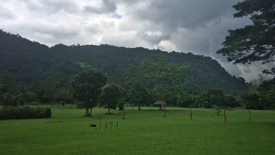Nature Tree Beauty In Nature Green Color Landscape Outdoors Mountain No People Thailand Traveling