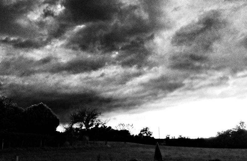 The storm brewing !