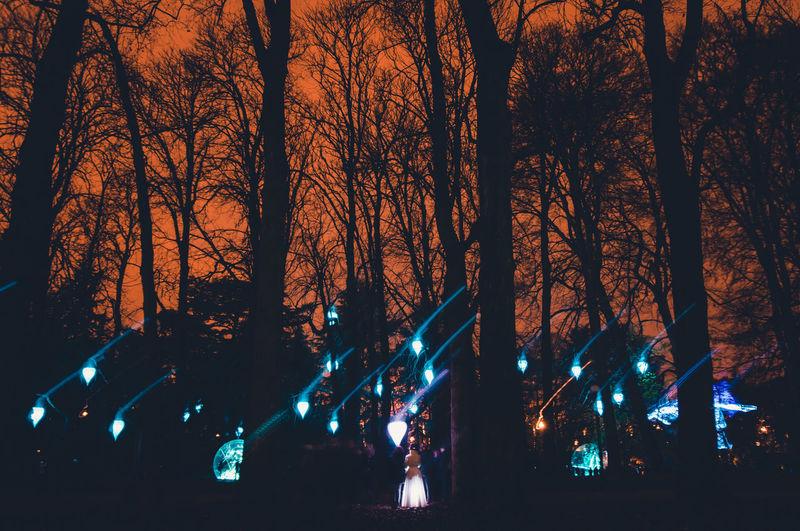 Biglamp Drama Dream Fairytale  Festival Festival Of Lights Fete Des Lumieres Field Forest Forestwalk France Girl Lamp Lamps Lyon Trees Urban