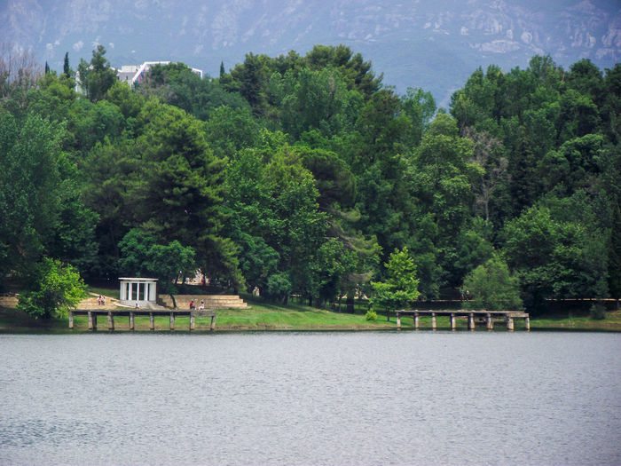 Artificial Lake Of Tirana Tree Sky Green Color Lush - Description Growing Countryside Lush Foliage Greenery Woods Tranquil Scene Residential Structure Growth Foggy Building Tranquility Blooming