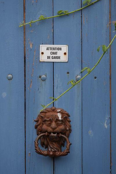 Warning guard cat Blue Breizh Bretagne Care Close-up Door Funny Guard Piriac Piriac-sur-mer Warning Sign
