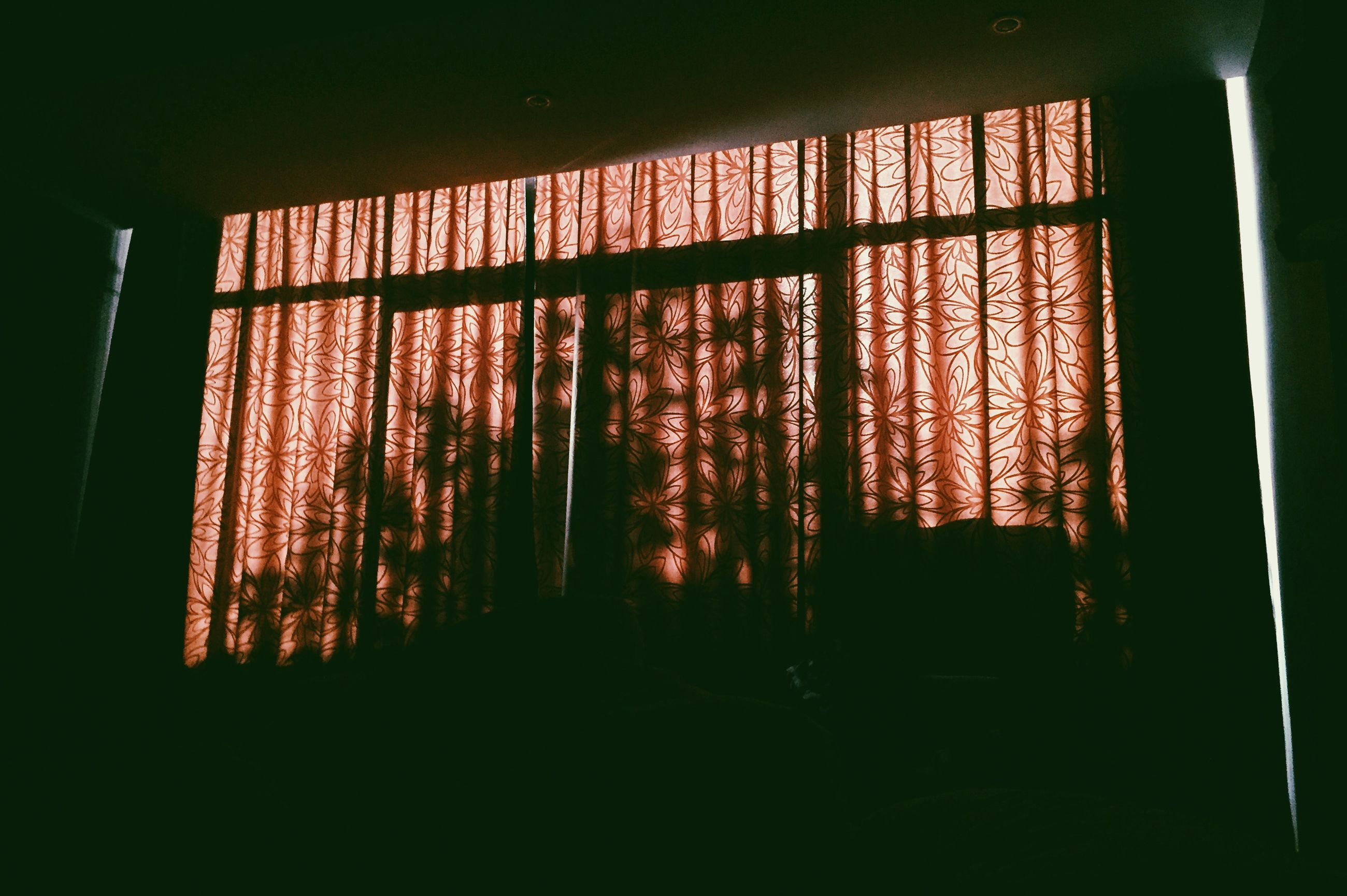 indoors, window, silhouette, built structure, dark, sunlight, architecture, tree, curtain, sunset, no people, glass - material, house, home interior, day, transparent, sunbeam, nature, tranquility, shadow
