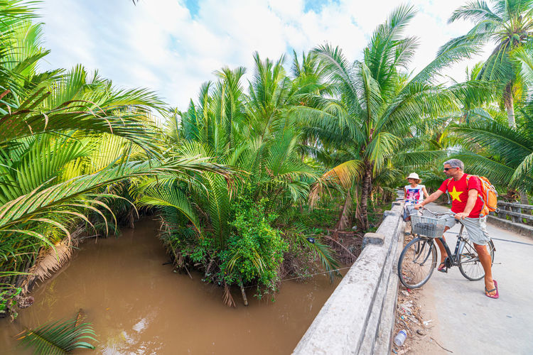 People riding bicycle on palm trees against sky