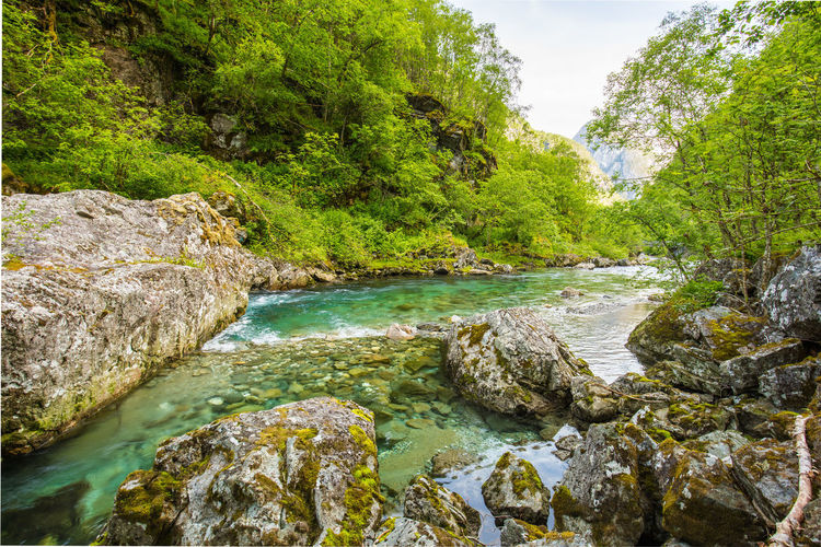 Beauty In Nature Canyon Day Forest Holiday Landscape Nature No People Outdoors River Rock - Object Scenics Sky Stalheim Stalheimsklevia Tranquil Scene Tranquility Tree Water Waterfall