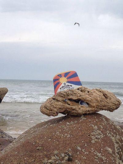 Resist Horizon Over Water Sky No People Tranquility Outdoors Calmness Springtime Day Bird Freedom Tibet Flag Tibet Culture Dalai Lama Atlantic Ocean