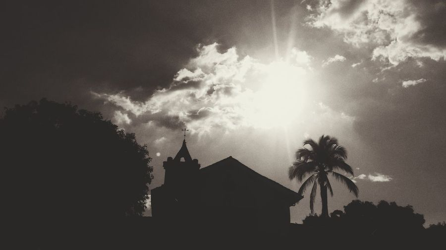Palm Tree Tree Silhouette No People Sky Architecture Outdoors Night Church Architecture CALI COLOMBIA Colombia