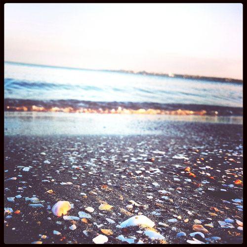 Beach Where Do You Swarm? EyeEmRussianTeam Ukraine, Odessa