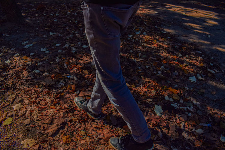 Low section of man walking on fallen autumn leaves