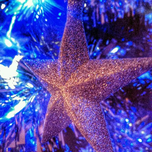 your a star! Christmas Hdr_Collection Christmas Tree Christmas 2013