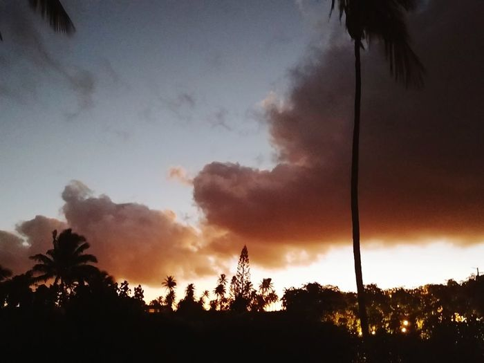 cloud communications WOW Communication Cloud Do You See What I See? No Filter Look Up Epic Cloud Show Love Thank You Cloud Convo Vibrant Color Tree Sunset Forest Fire Palm Tree Silhouette Accidents And Disasters Sky Cloud - Sky Dramatic Sky Atmospheric Mood Romantic Sky Moody Sky