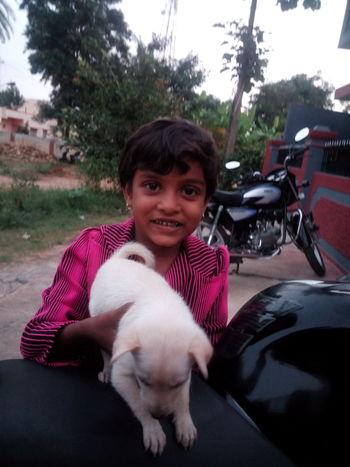 Girl Pets Looking At Camera Innocence