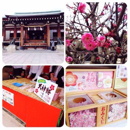 Asian Culture Shrine, plum trees, sacred lot, baked rice cake